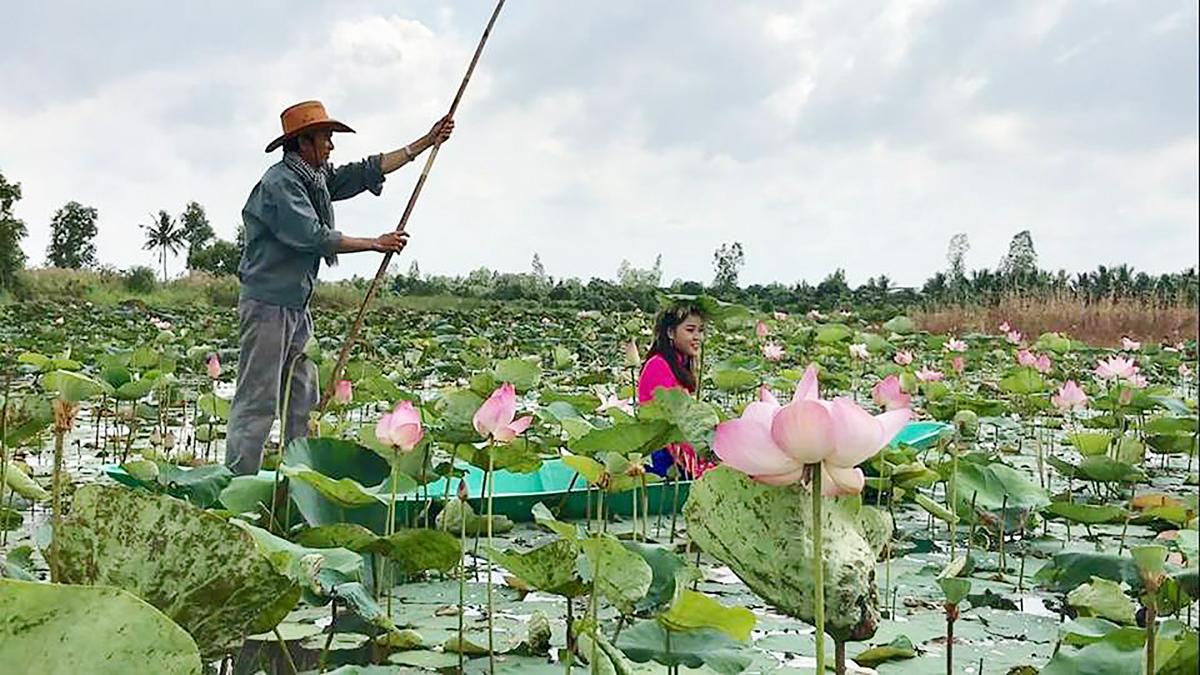 Khách du lịch tại Đồng Sen Tháp Mười tỉnh Đồng Tháp.