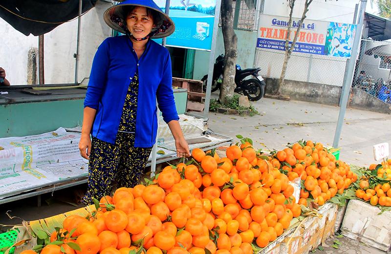 Quýt Tiều (còn gọi là quýt hồng) được bày bán tại điểm kinh doanh của bà Huỳnh Thị Phượng ở  huyện Phong Điền. Ảnh: KHÁNH TRUNG