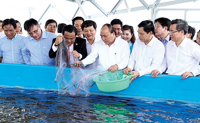 Thủ tướng Nguyễn Xuân Phúc và các đại biểu thả tôm giống tại Khu nông nghiệp ứng dụng công nghệ cao phát triển tôm Bạc Liêu. Ảnh: Thống Nhất-TTXVN
