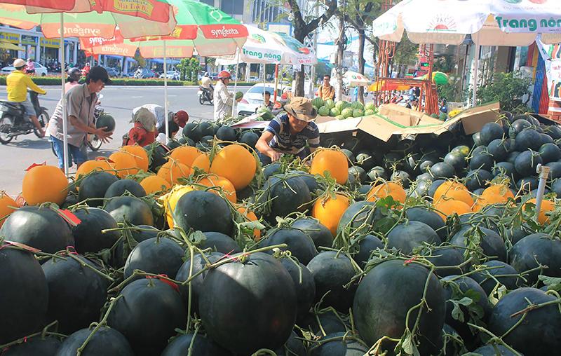 Mua bán các loại dưa hấu trái tròn phục vụ chưng Tết tại một điểm kinh doanh ở đường 30-4, quận Ninh Kiều, TP Cần Thơ. Ảnh: KHÁNH TRUNG