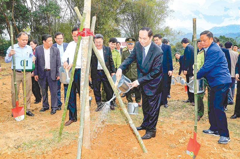 """Chủ tịch nước Trần Đại Quang phát động """"Tết trồng cây đời đời nhớ ơn Bác Hồ"""" tại xã Quân Bình. Ảnh: NHAN SÁNG (TTXVN)"""