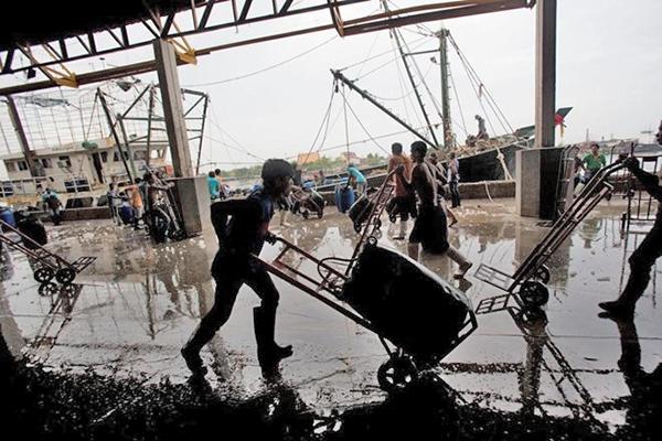 Ngư dân tại một chợ cá ở tỉnh Samut Sakhon, phía tây Bangkok. Nguồn: AP