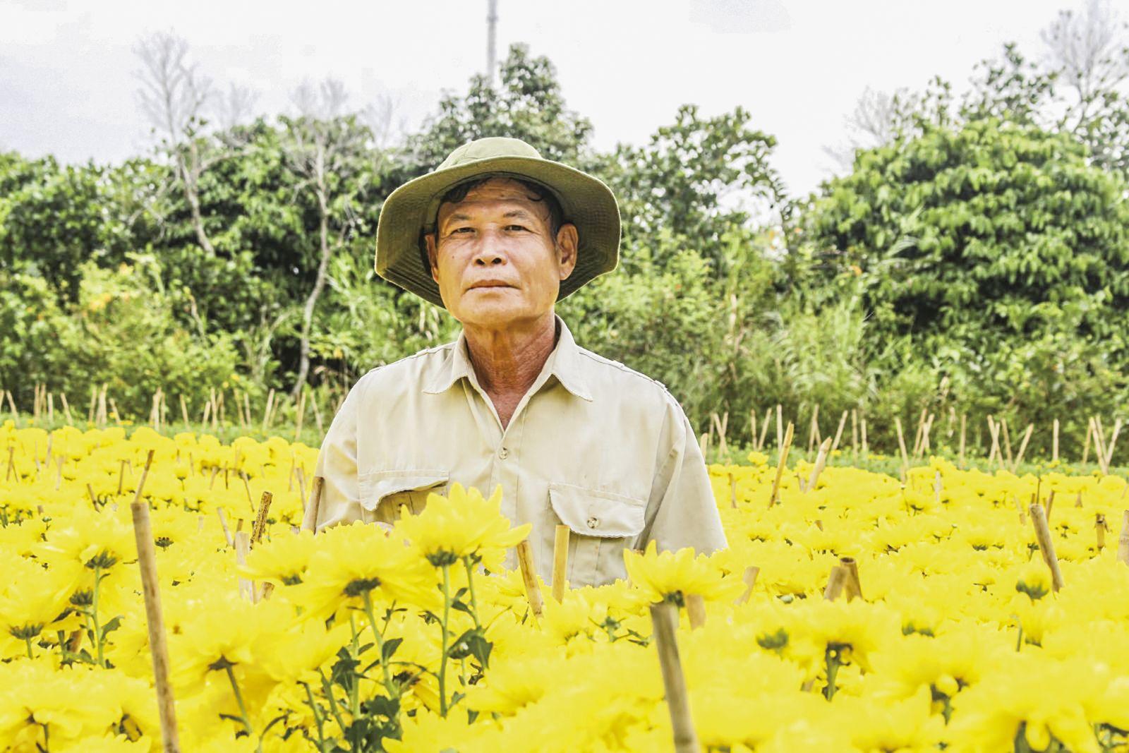 Ông Huỳnh Thanh Cần chăm sóc hoa cúc, hoa vạn thọ tại khu vườn trồng hoa kiểng của mình. Ảnh: HÀ VĂN
