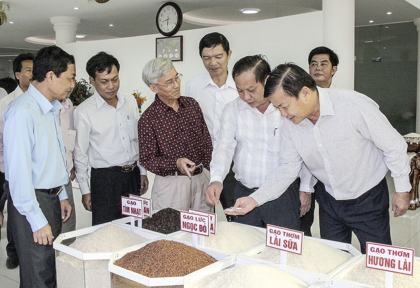 Công ty cổ phần Nông nghiệp công nghệ cao Trung An giới thiệu sản phẩm gạo của công ty đến lãnh đạo TP Cần Thơ. Ảnh: NAM HƯƠNG