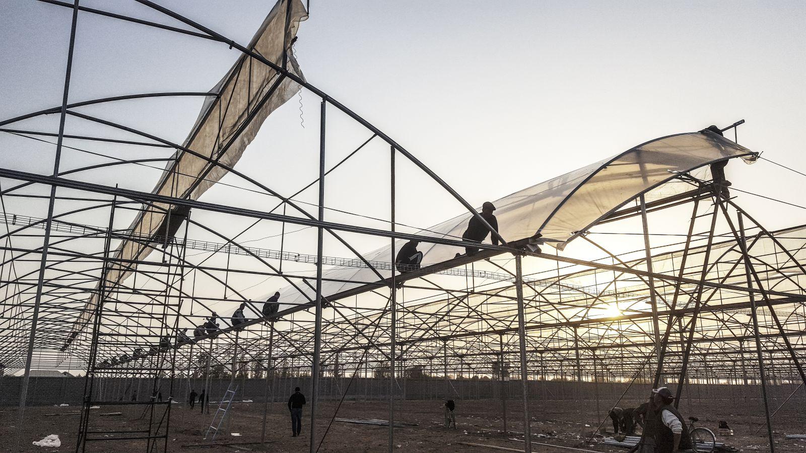 Công ty Argos- mang đến giải pháp nông nghiệp công nghệ cao từ Israel