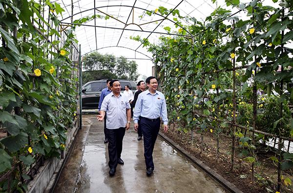 Phó Thủ tướng Vương Đình Huệ trong lần thăm khu dân cư nông thôn mới kiểu mẫu ở thôn Hà Thanh, xã Tượng Sơn, huyện Thạch Hà, tỉnh Hà Tĩnh năm 2017. Ảnh: VGP