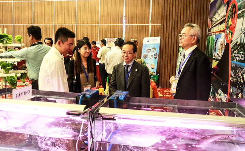 Ông Konaka Tetsuo, Trưởng Đại diện Cơ quan Hợp tác quốc tế Nhật Bản  (JICA) - (thứ 2, từ phải qua) tham quan khu trưng bày cá thát lát nguyên liệu dùng sản xuất chả cá thát lát xuất khẩu tại TP Cần Thơ. Ảnh: N.H