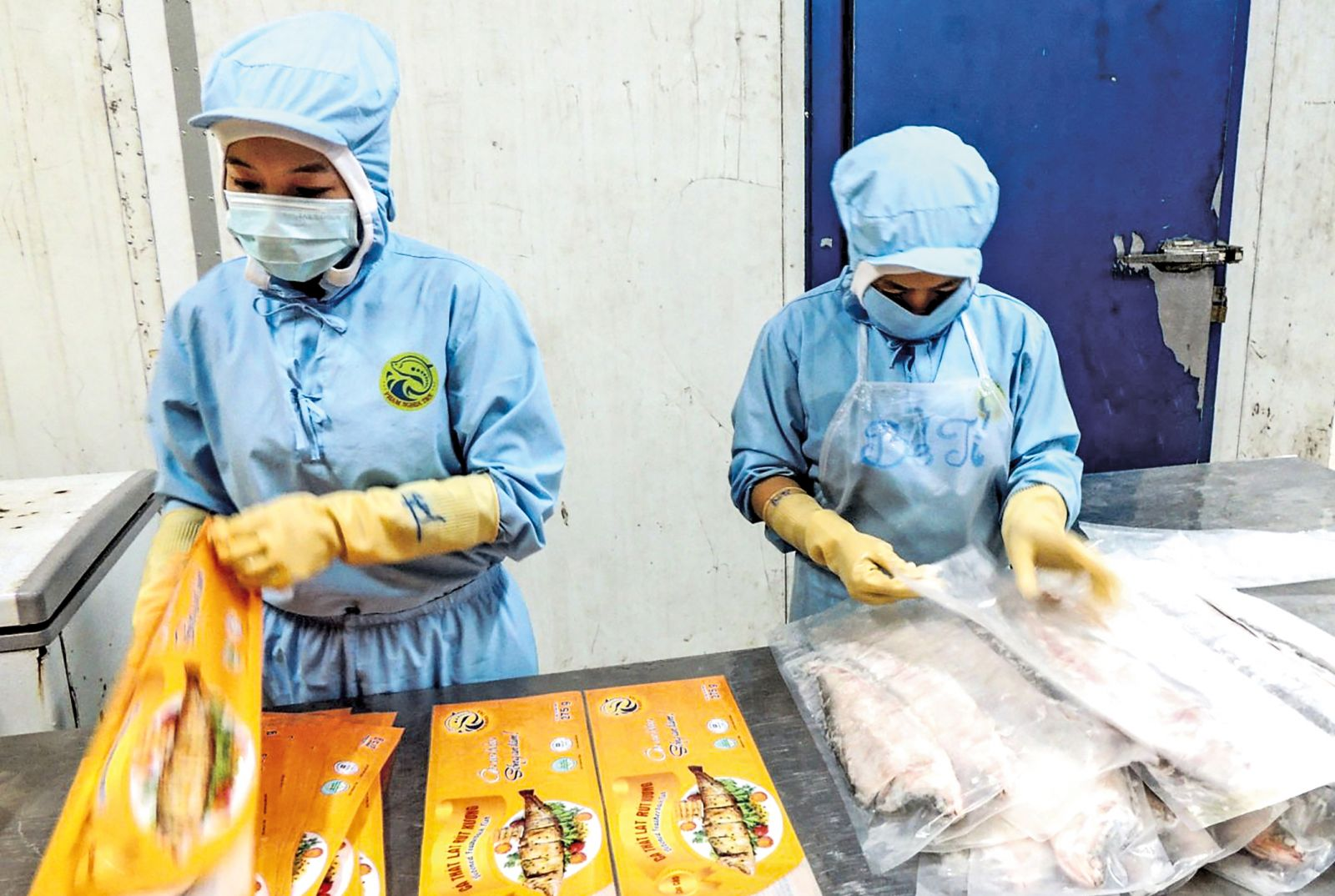 Công ty TNHH MTV Phạm Nghĩa T&N là một trong những đơn vị tham gia vào chuỗi cung ứng thực phẩm an toàn của thành phố. Trong ảnh: Sản xuất cá thát lát tại Công ty TNHH MTV Phạm Nghĩa T&N. Ảnh: MỸ THANH