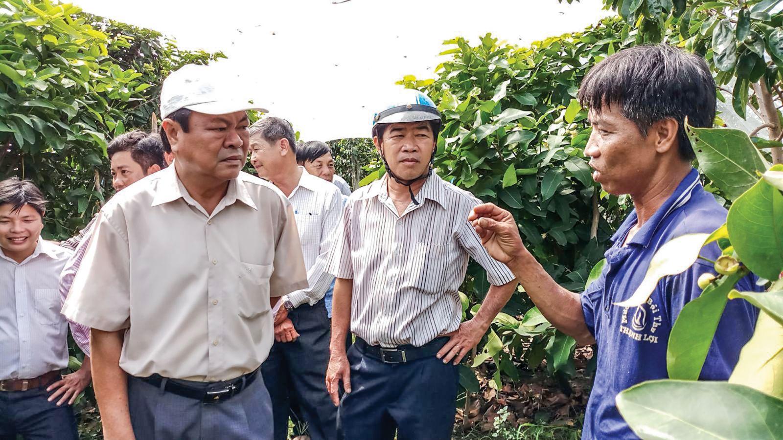 Lãnh đạo huyện Vĩnh Thạnh thăm vườn cây ăn trái của anh Đinh Văn Bá. Ảnh: MINH HẢI