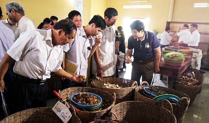 Các đại biểu tham quan Phòng Chẩn trị Y học cổ truyền của Chùa Phước An.
