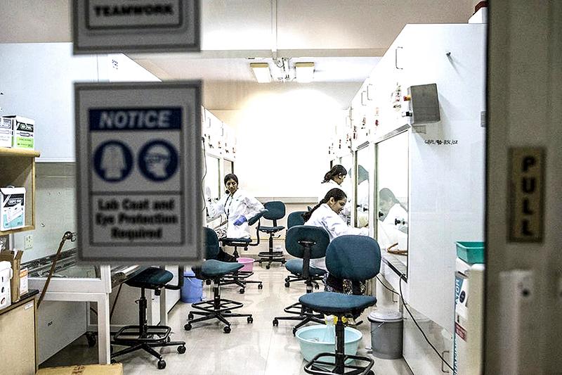 Phòng nghiên cứu thuốc chống siêu vi khuẩn của công ty GangaGen ở thành phố Bengaluru. Ảnh: Bloomberg