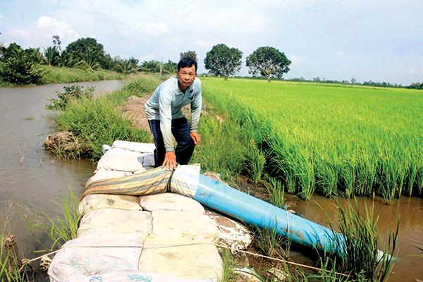 Anh Hà Minh Phương, ngụ ấp Thới Hiệp 1, xã Đông Thắng, huyện Cờ Đỏ bơm thoát nước cho ruộng lúa. Ảnh: KHÁNH TRUNG