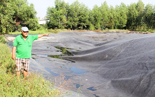 Toàn bộ chất thải của heo được thu gom vào túi biogas nhưng vẫn phát tán mùi hôi thối. Ảnh: KHẮC VIỆT