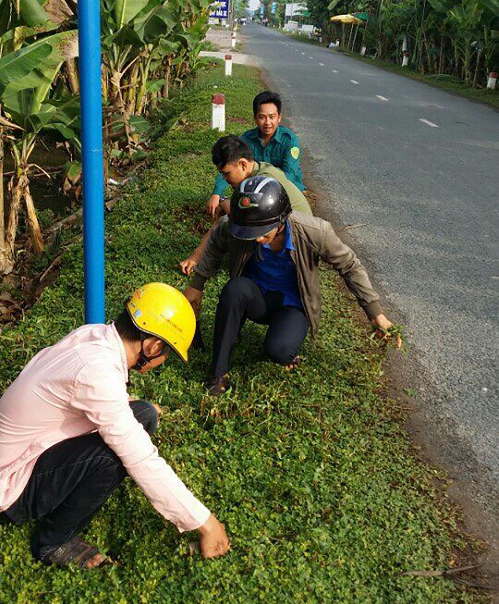 """Đoàn viên thanh niên xã Trường Thắng làm cỏ, chăm sóc cây trên tuyến đường """"Sáng - xanh - sạch - đẹp - an toàn"""". Ảnh: KHANG MINH"""
