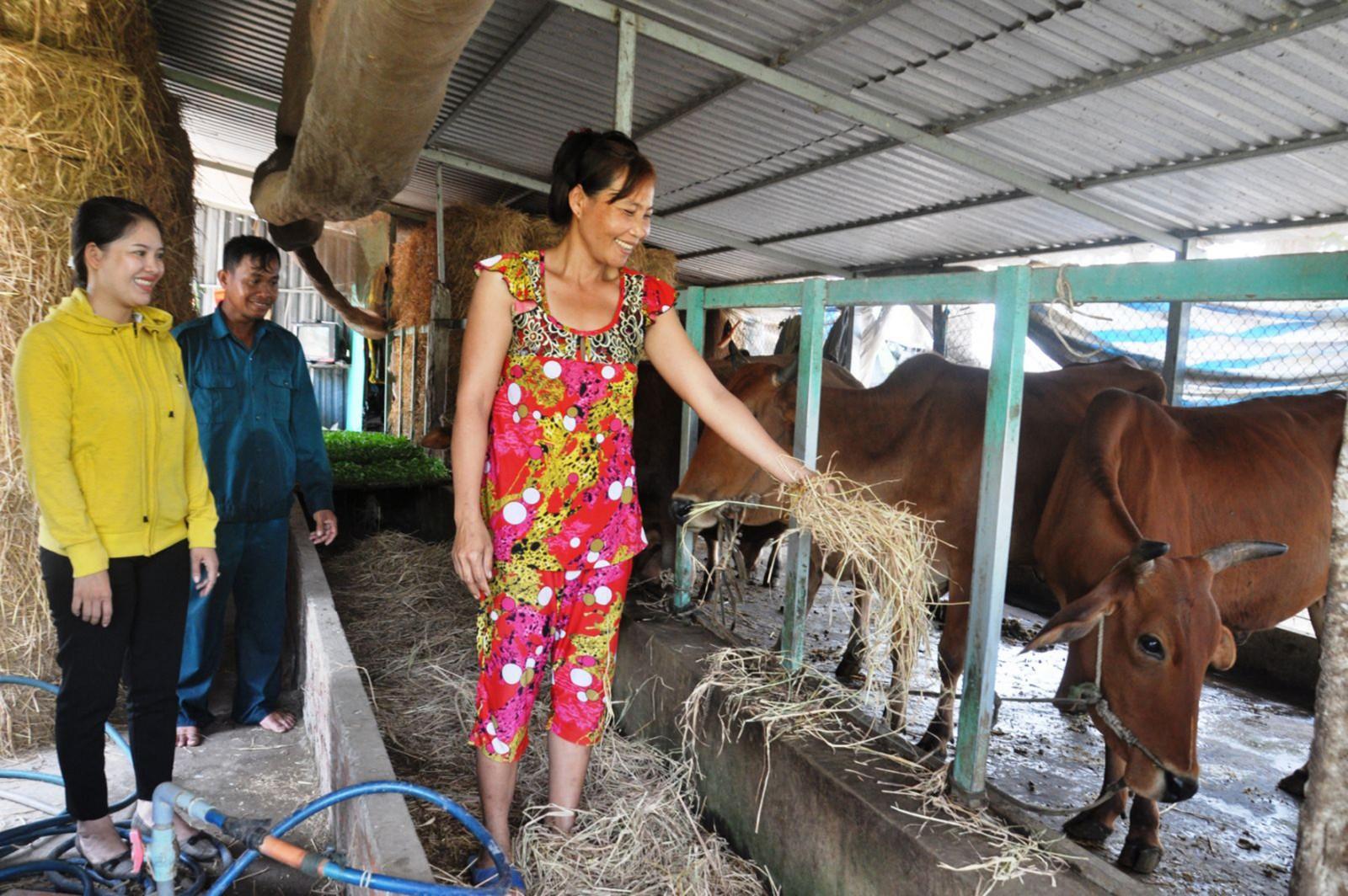 Được Hội LHPN xã hỗ trợ vay vốn, chị Thạch Thị Sa Vết (bìa phải) xây dựng mô hình nuôi bò, vươn lên thoát nghèo. Ảnh: ANH DŨNG