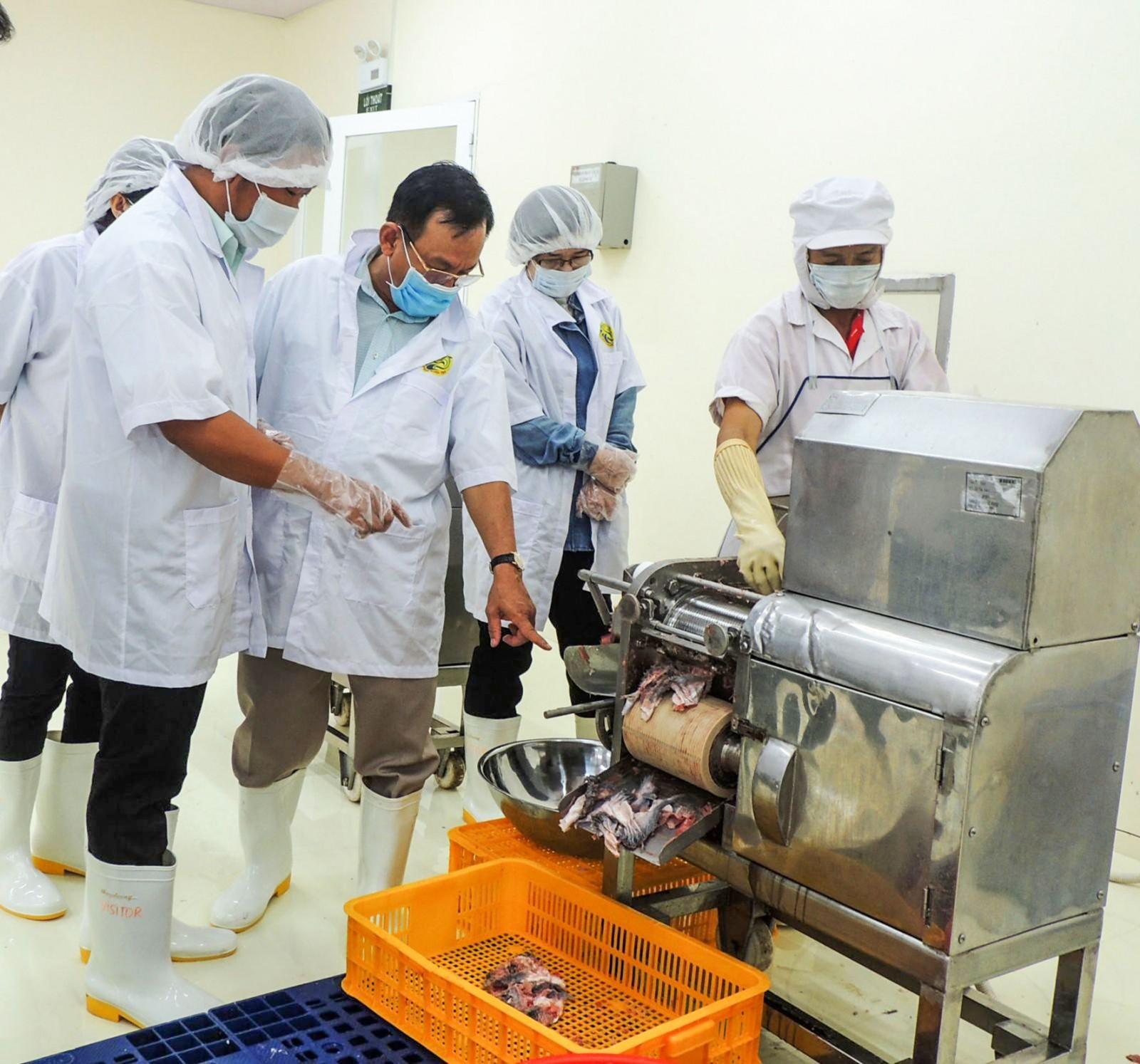 Ứng dụng máy móc hiện đại vào sản xuất, chế biến cá thát lát tại  Công ty Cổ phần Thực phẩm Phạm Nghĩa, quận Cái Răng. Ảnh: QUẾ LIM