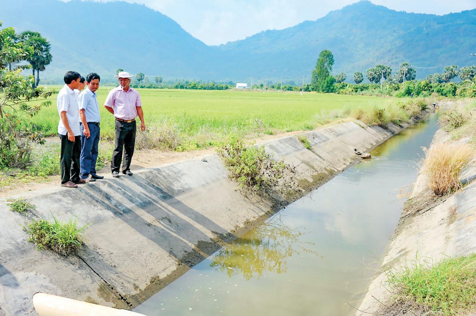 Nhiều tuyến kênh nội đồng tại An Giang đang kiệt nước. Ảnh: BÌNH NGUYÊN