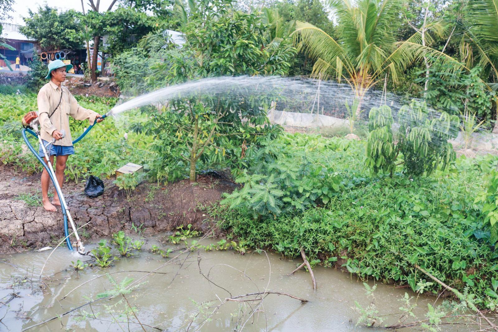 Tưới nước cho cây trồng tại hộ ông Ngô Văn Nhiều ở xã Trường Xuân, huyện Thới Lai. Ảnh: KHÁNH TRUNG