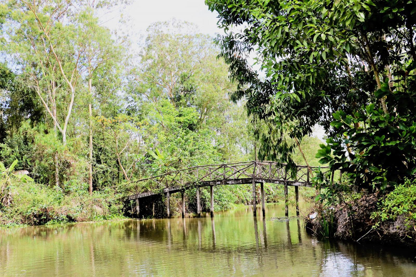 Chiếc cầu cây xen lẫn giữa rừng tạo nên khung cảnh nên thơ, lãng mạn khiến du khách thêm phần lưu luyến.