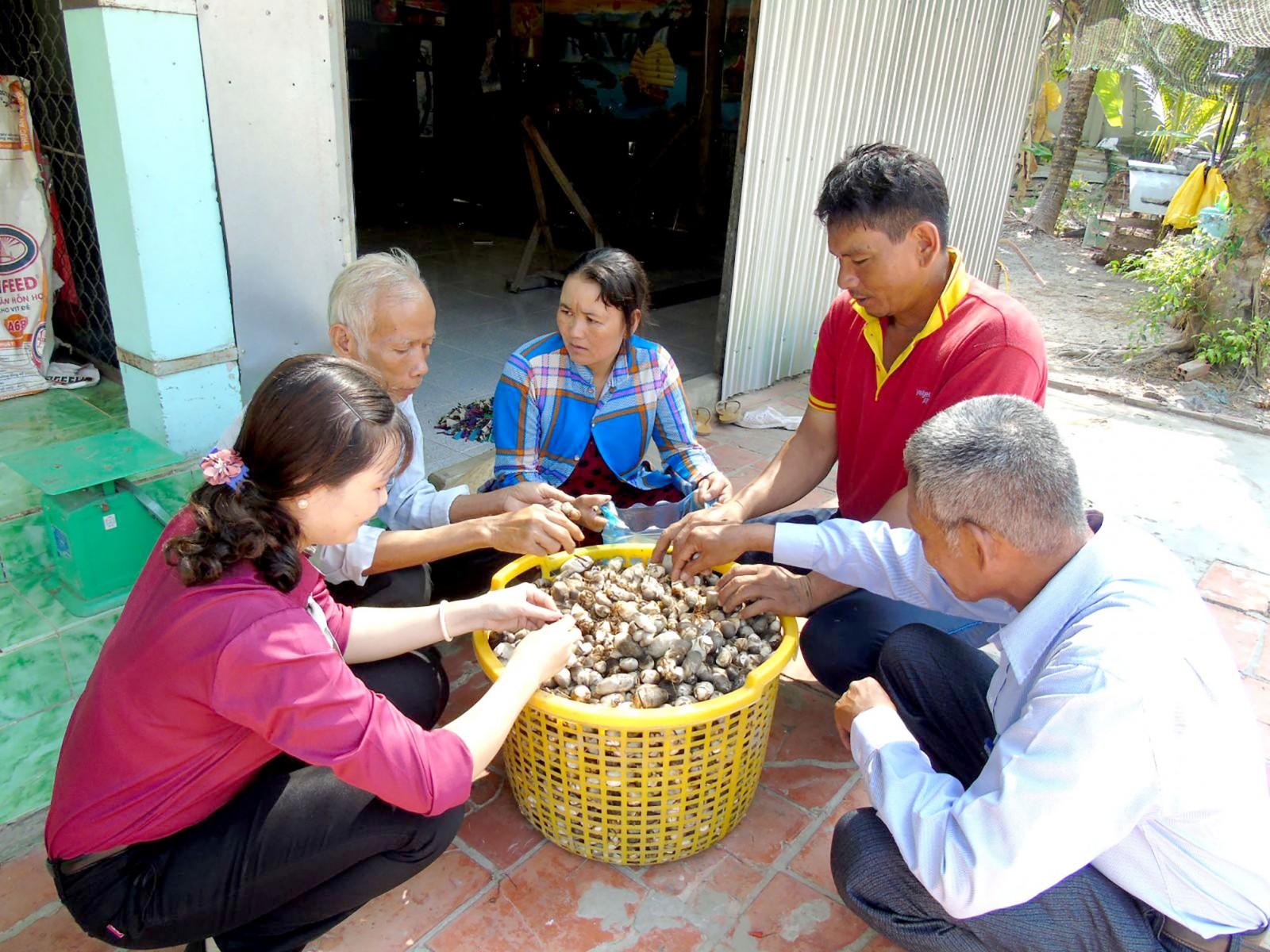 Nhờ chuyển đổi từ trồng lúa sang trồng nấm rơm mà nhiều bà con ở ấp Trường Khương có cuộc sống khấm khá. Ảnh: THANH THY