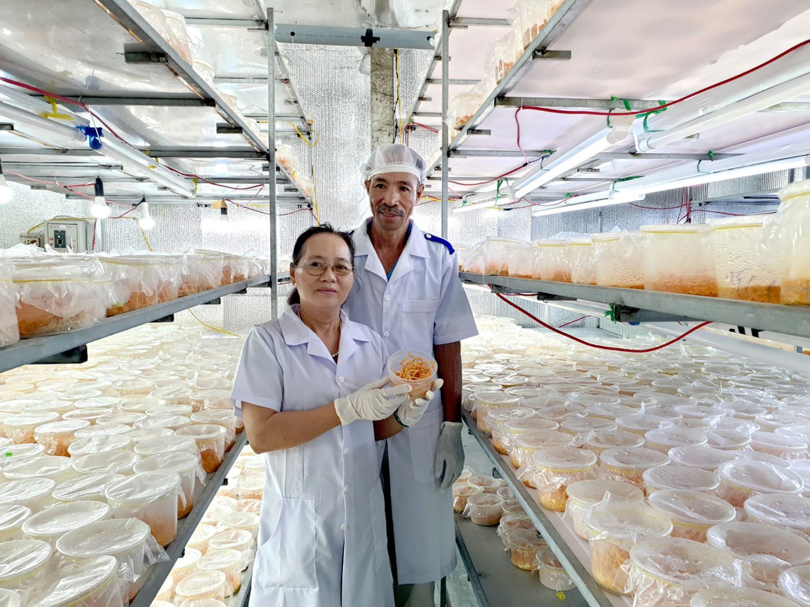 Vợ chồng ông Bùi Quang Huấn và bà Bùi Thị Xoa, ngụ tại ấp 3, xã Thạnh Phú, huyện Cờ Đỏ giới thiệu mô hình nuôi trồng đông trùng hạ thảo của gia đình. Ảnh: HỒNG VÂN