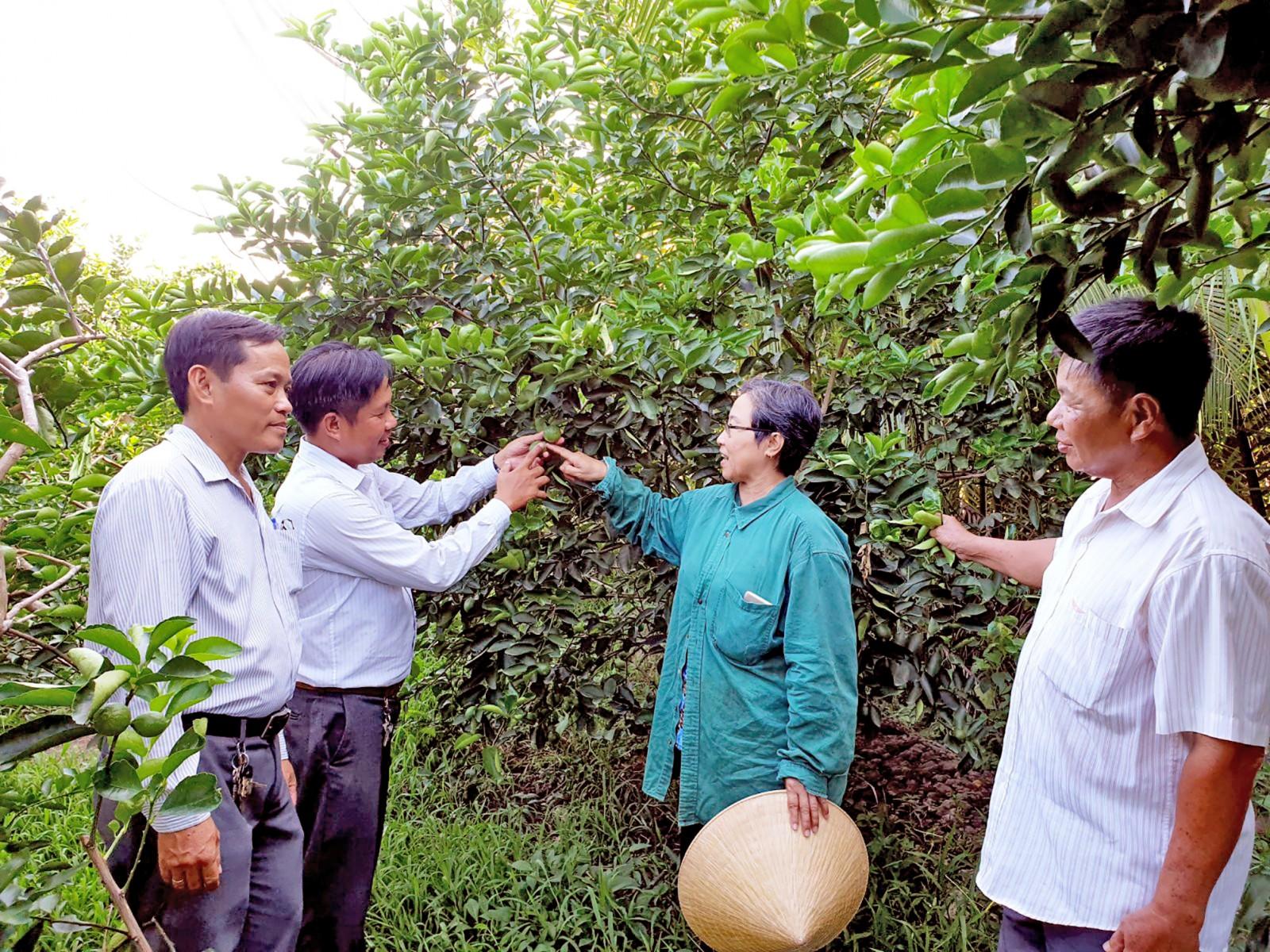 Lãnh đạo HND quận Bình Thủy đến thăm các mô hình sản xuất của hội viên. Ảnh: HỒNG VÂN