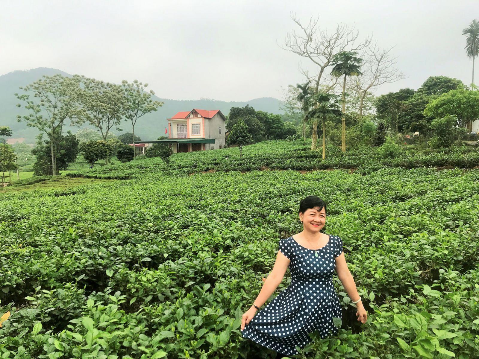 Du khách du ngoạn giữa những đồi trà xanh rì. Ảnh: DUY LỮ