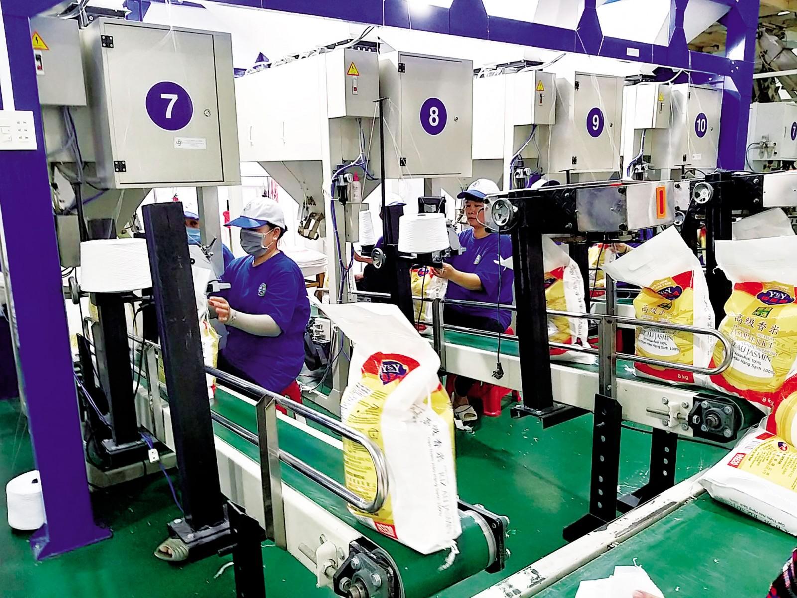 Khâu đóng bao bì gạo xuất khẩu của Công ty Cổ phần Nông nghiệp công nghệ cao Trung An. Ảnh: MINH HUYỀN