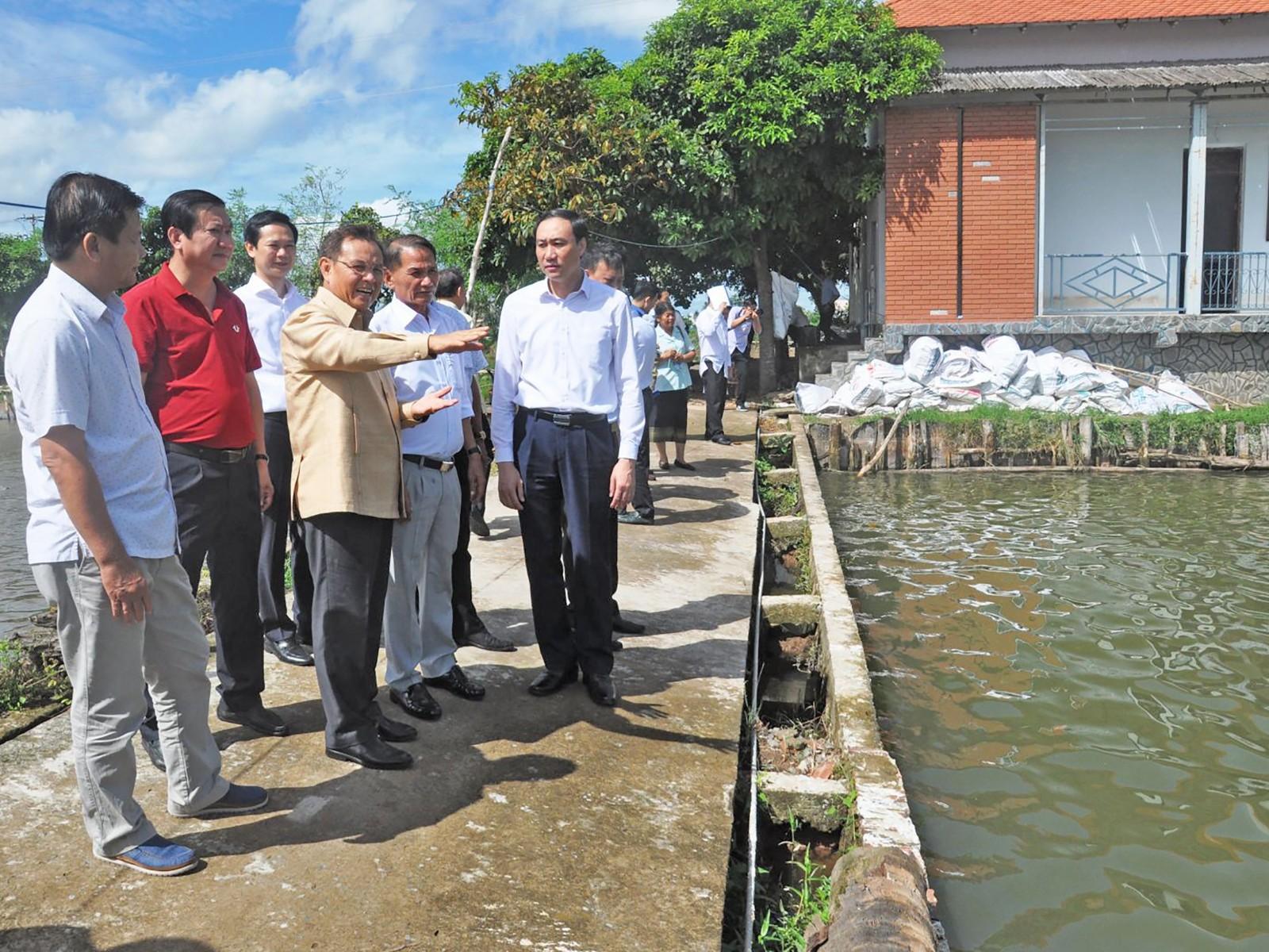 Đồng chí Xay-xổm-phon Phôm-vi-hản (thứ 3 bên trái sang) tham quan mô hình nuôi cá tra của Công ty TNHH Công nghiệp thủy sản miền Nam.