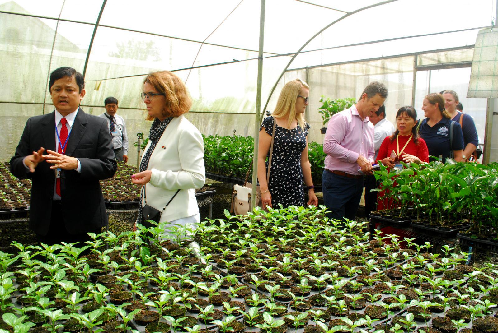 Sản phẩm nông nghiệp là thế mạnh của Việt Nam, ảnh: chuyên gia nước ngoài tìm hiểu hoạt động sản xuất cây giống tại Viện nghiên cứu Cây ăn quả miền Nam. Ảnh: CTV