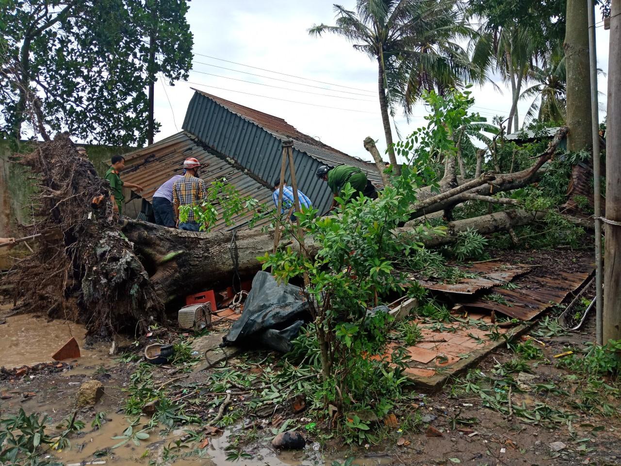 Mưa lớn, lốc xoáy làm ngã đổ cây xanh và đè trên nhà dân tại quận Thốt Nốt vào ngày 4-8-2019.