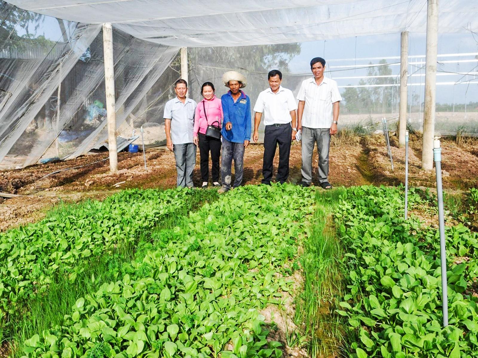 Cán bộ phường Trung Nhứt tham quan mô hình trồng rau sạch của người dân.