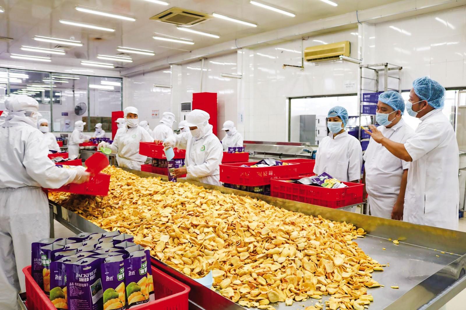 Đoàn kiểm tra liên ngành kiểm tra quy trình sản xuất tại Công ty TNHH Trái cây Mekong.