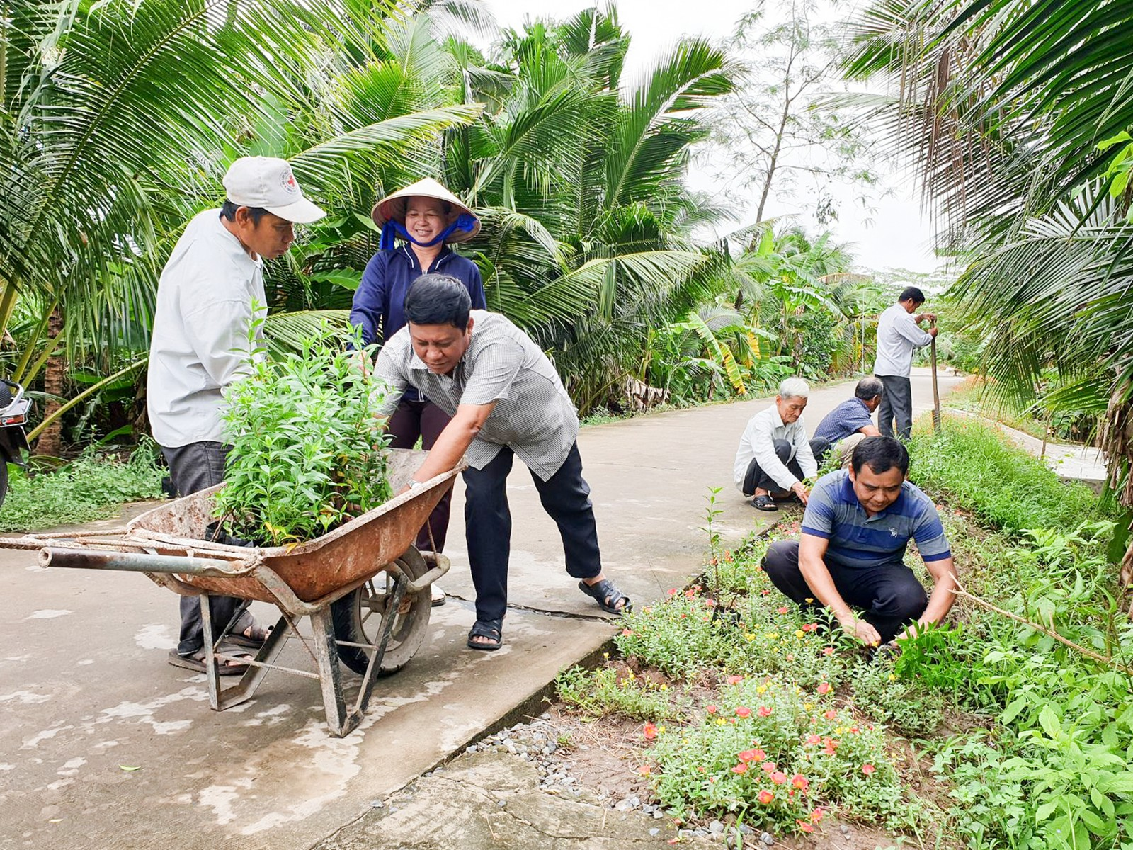 Chính quyền và nhân dân xã Nhơn Ái ra quân trồng hoa, vệ sinh môi trường trên các tuyến đường.