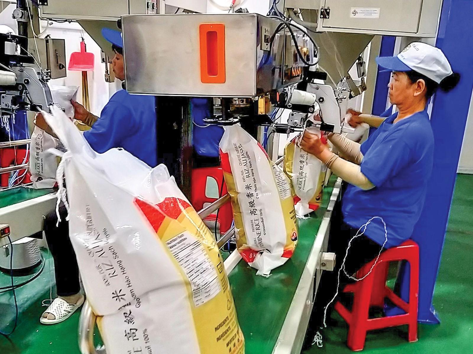 Dây chuyền đóng bao bì gạo xuất khẩu tại Công ty Cổ phần Nông nghiệp Công nghệ cao Trung An. Ảnh: MINH HUYỀN