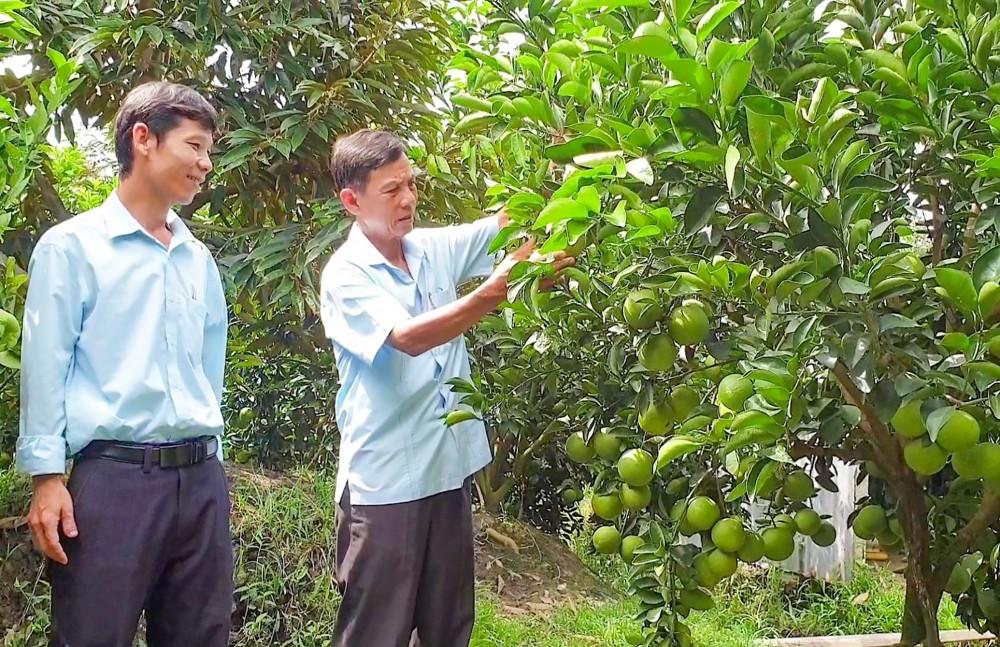 Ông Lê Bá Phước, Chủ tịch Hội Nông dân TP Cần Thơ, đến thăm mô hình sản xuất của hội viên nông dân.