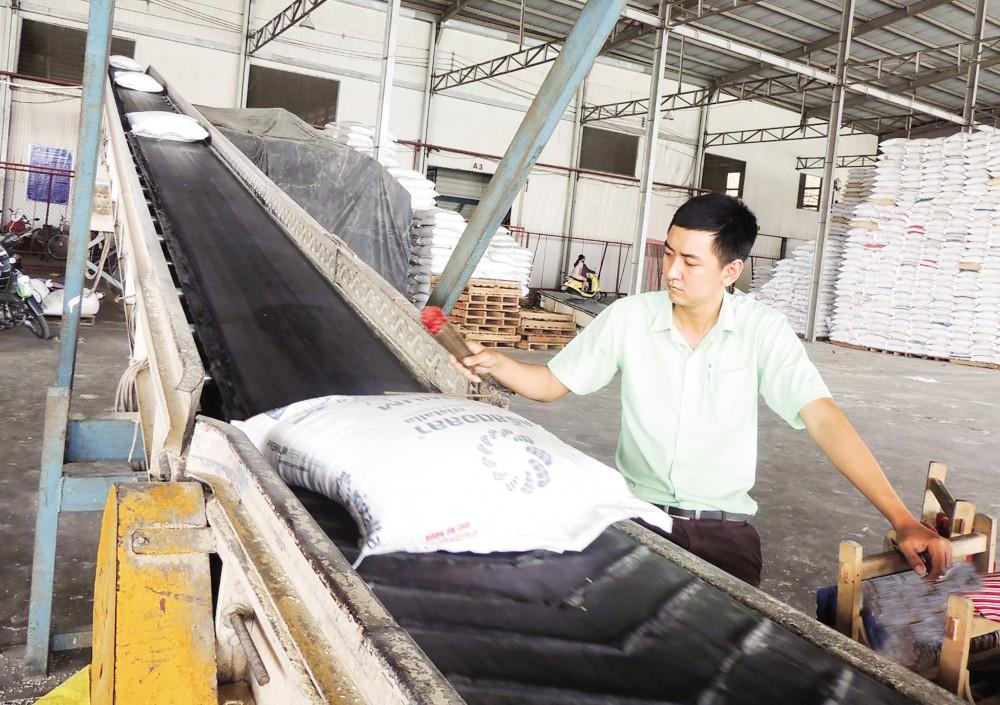 Dây chuyền chế biến gạo xuất khẩu của Công ty CP Nông nghiệp công nghệ cao Trung An, quận Thốt Nốt, TP Cần Thơ.
