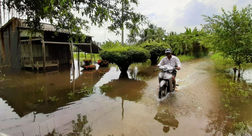 Ngập lụt kéo dài gây ảnh hưởng nặng nề đời sống sinh hoạt và sản xuất của người dân Cà Mau. Ảnh: Hiếu Nghĩa