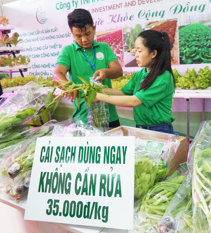 Rau sạch đạt chuẩn VietGAP của Công ty TNHH Đầu tư và Phát triển Minh Hòa.