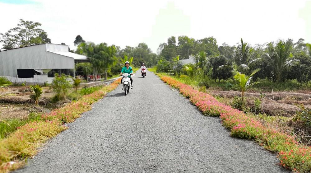 Cán bộ ấp Trường Thắng vận động dân trồng hoa tạo mỹ quan khu dân cư.