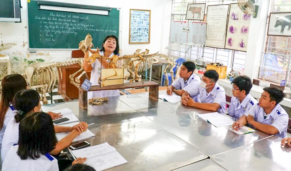 Giờ học thực hành của sinh viên Trường Cao đẳng Kinh tế - Kỹ thuật Cần Thơ.