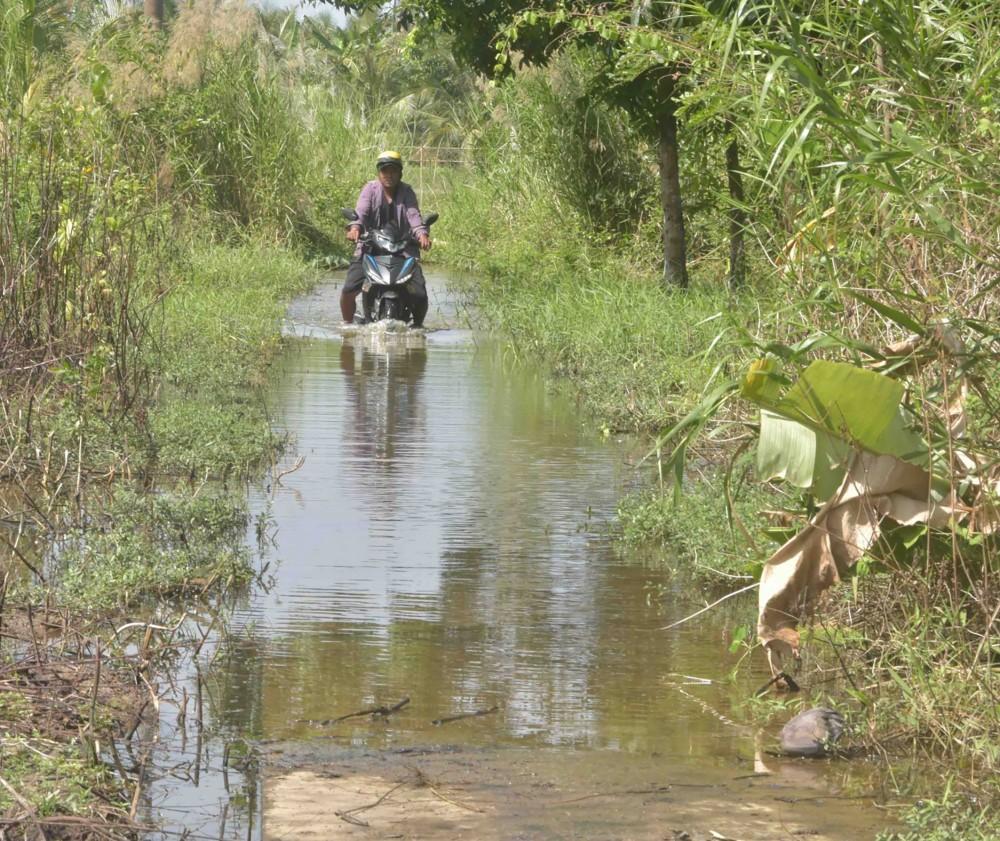 Đường giao thông vào vùng trấp thường bị ngập vào mùa nước lên.