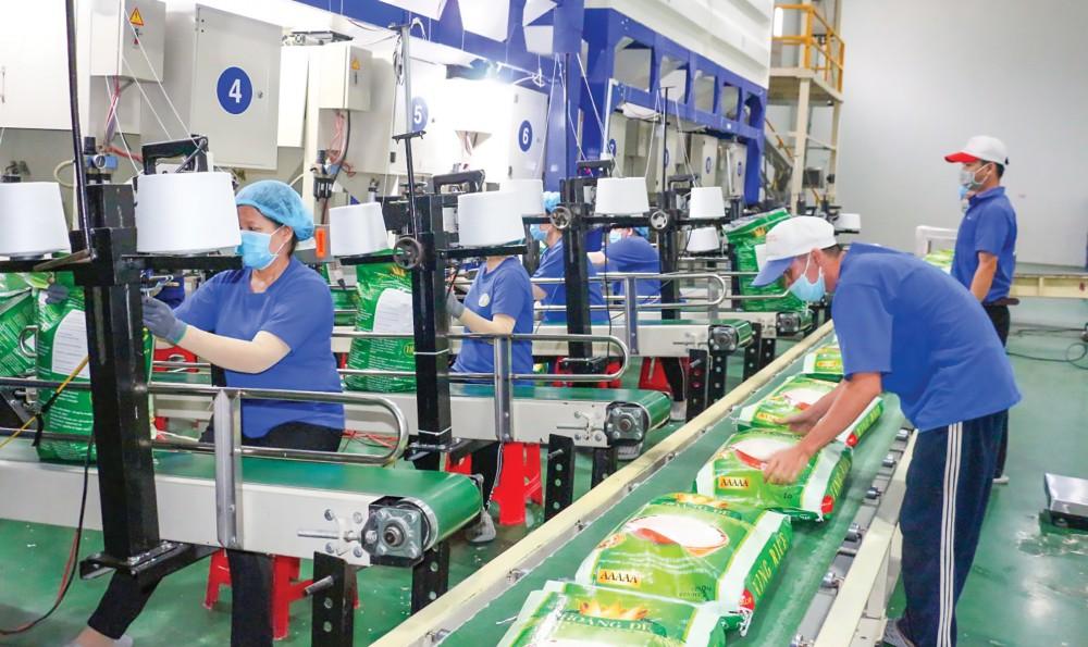 Đóng gói gạo xuất khẩu sang thị trường EU tại Công ty CP Công nghệ cao Trung An.
