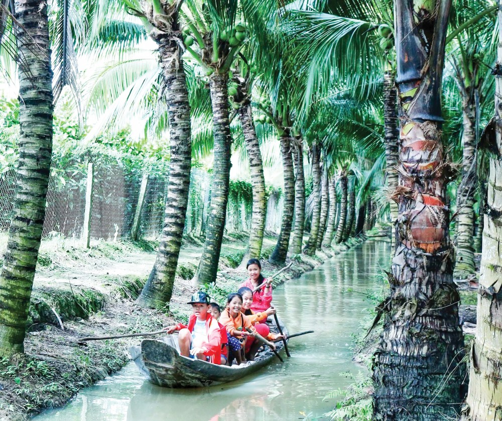Trải nghiệm tại vườn dừa cù lao Tân Lộc, Thốt Nốt.