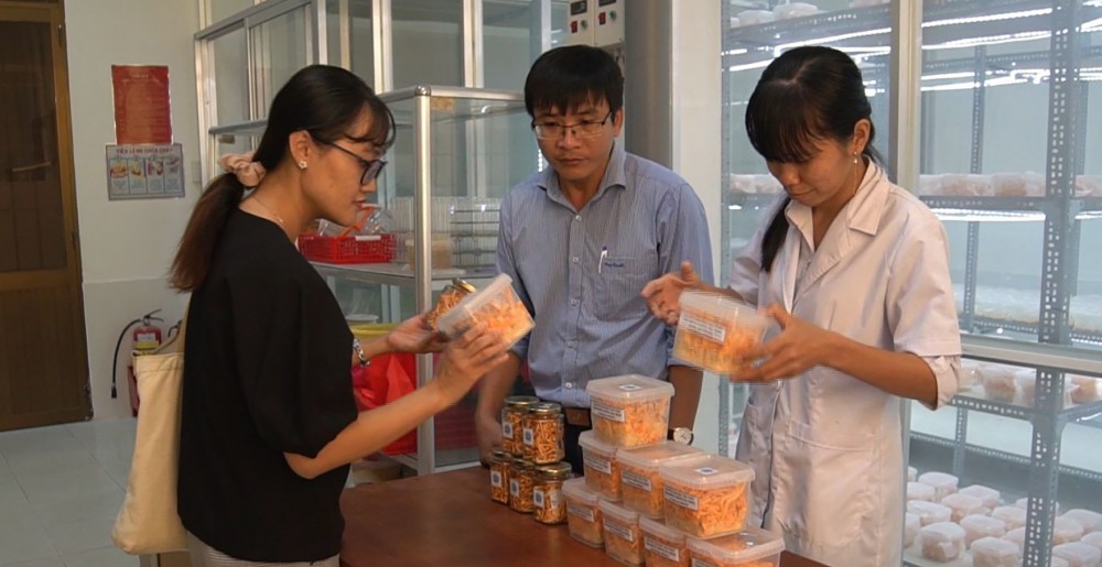 Trường ĐH Trà Vinh sản xuất nấm đông trùng hạ thảo với mong muốn nhiều người có thể tiếp cận nguồn dược liệu quý này trong phòng trị bệnh và bồi bổ sức khỏe.