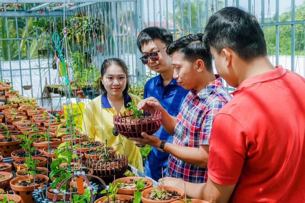 Anh Giang và Hùng (bên phải) tư vấn cho khách hàng đến tìm mua lan đột biến tại vườn.