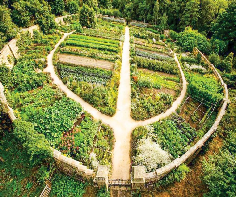 Khu vườn Permaculture. Ảnh tư liệu của smallfootprintfamily.com