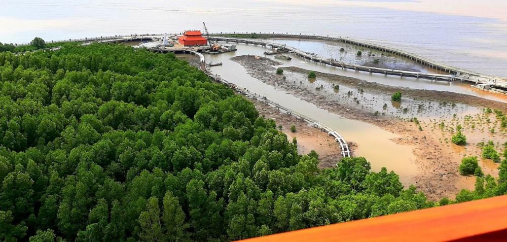 Tỉnh Cà Mau có điều kiện thuận lợi để phát triển du lịch sinh thái. Ảnh: HIẾU NGHĨA