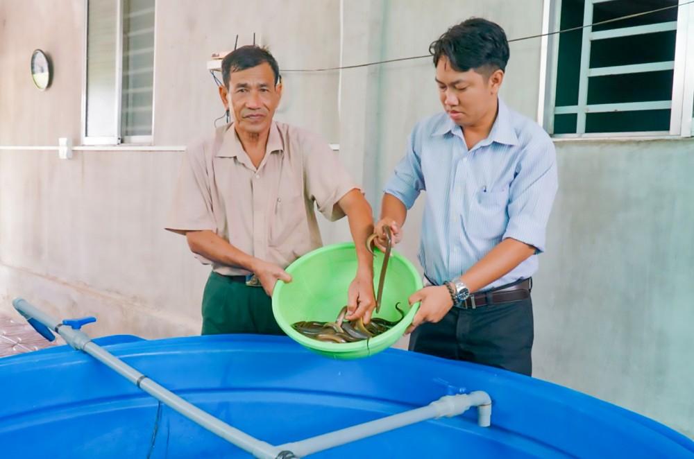 Ông Bùi Văn Nhiên tham quan mô hình nuôi lươn không bùn của hội viên.