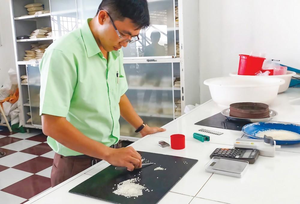 Kiểm tra chất lượng, độ an toàn của gạo tại Công ty CP Nông nghiệp công nghệ cao Trung An.